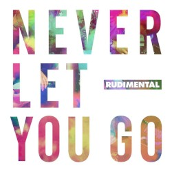 Rudimental - Never Let You Go (feat. Foy Vance)